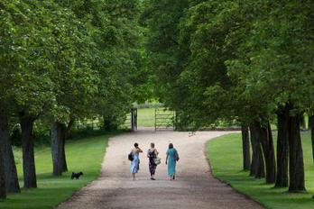 Ashton Court Estate - Bristol -.jpg