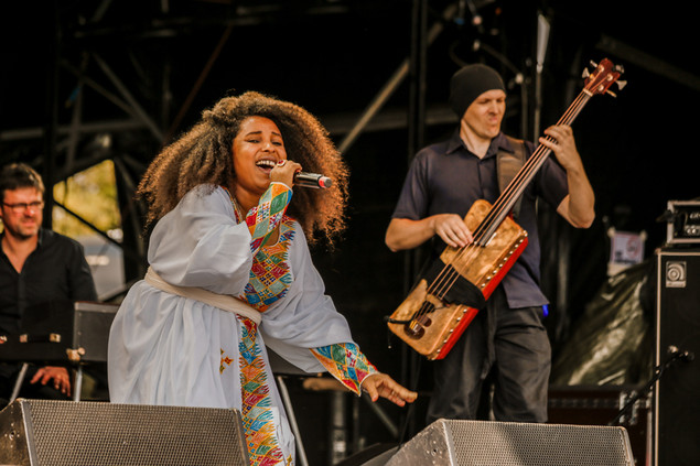 WOMAD 2018 - Wiltshire -  July 2018  - C