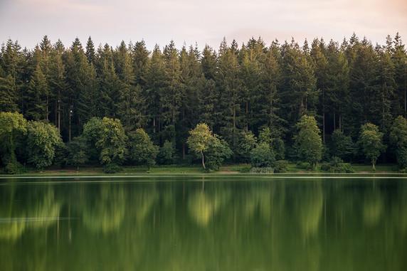 Shearwater Lake - Wiltshire - September