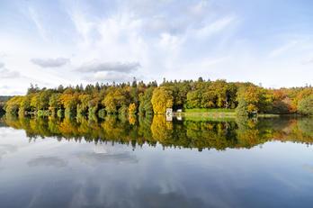 Shearwater Reflection - Autumn.jpg