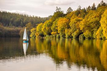 Shearwater Lake - Autumn.jpg