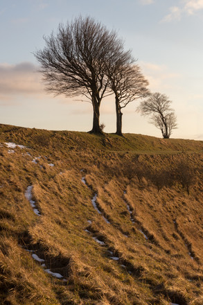 Roundway Hill Sunset - Wiltshire - Febru