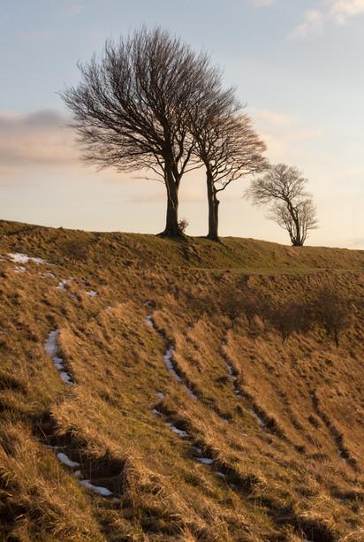 Roundway Hill Sunset - Wiltshire - Febru