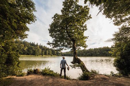 Shearwater Lake - Wiltshire.jpg