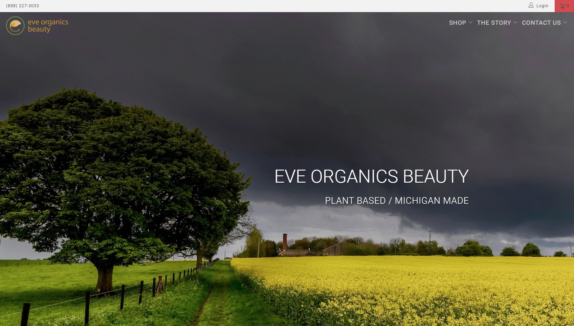 Eve Organics Beauty - Website Design
