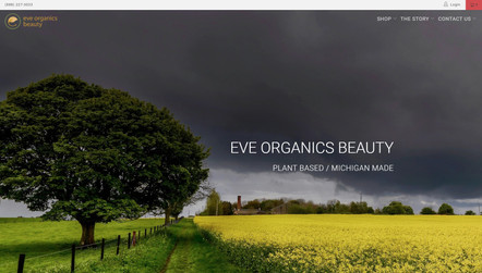 Eve Organics Beauty - Website Design.jpg