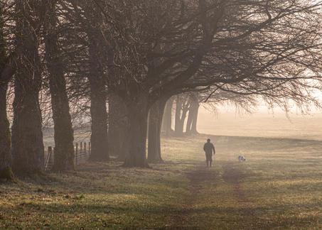 Monkton Farleigh Walking Dawn - Wiltshir