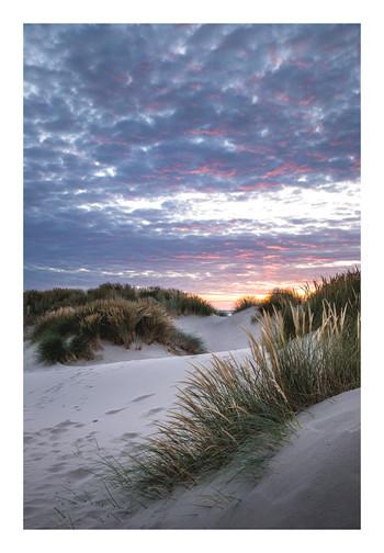 Ynyslas Sand Dunes - Wales - July 2019 -