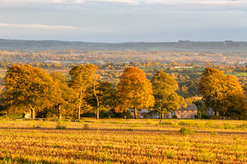 Wiltshire Countryside - Autumn.jpg
