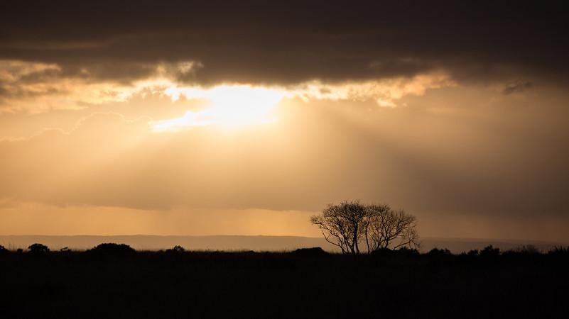 Black Down Hill - Somerset - November 20