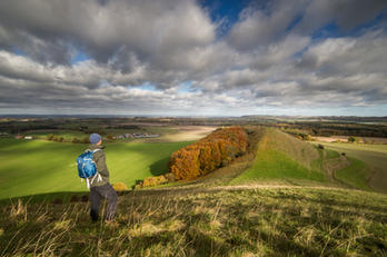 Cley Hill Autumn - Wiltshire.jpg