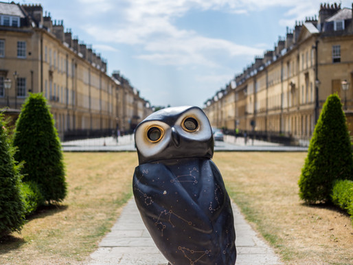 Minerva's Owls of Bath - We found them all!