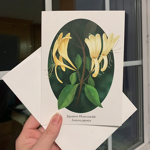Honeysuckle Note Cards- Set of 5