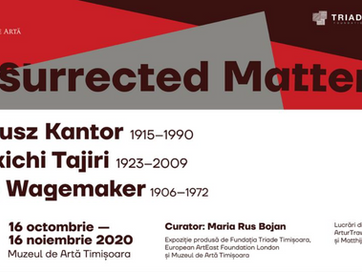 Group exhibition: Resurrected Matter, Museum of Art Timisoara, Romania