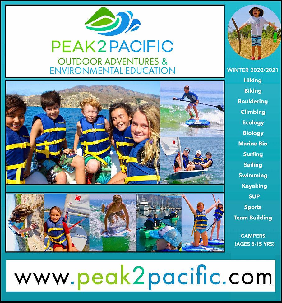 P2P Winter2020:21 Program Logo 1.pages.j