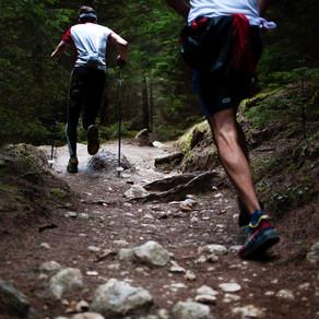 Ausdauertraining - Trainingswirkungen
