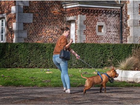"""Coluche disait """"si un chien est méchant regarde qui est au bout de sa laisse..."""""""