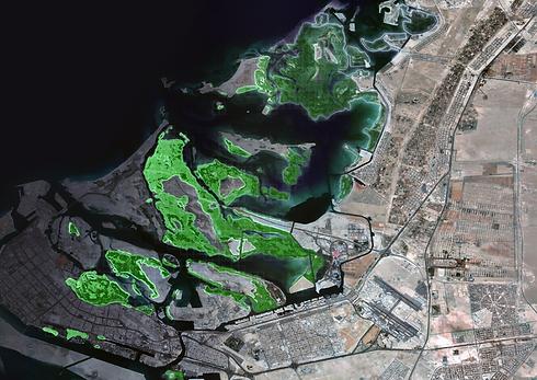 UAE_Mangrove_v0.png