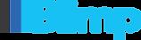 Blimp Logo PNG.png