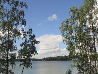 2017夏のフィンランド旅3日目 ベリー摘み
