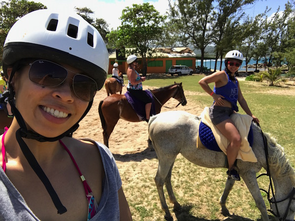 horse-selfie-2
