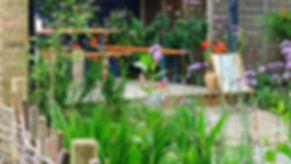 Mixed perennial planting herne hill garden design