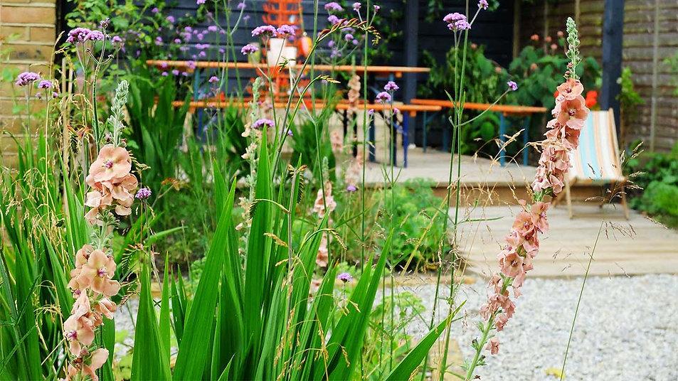 Vie through soft planting Herne Hiull garden design