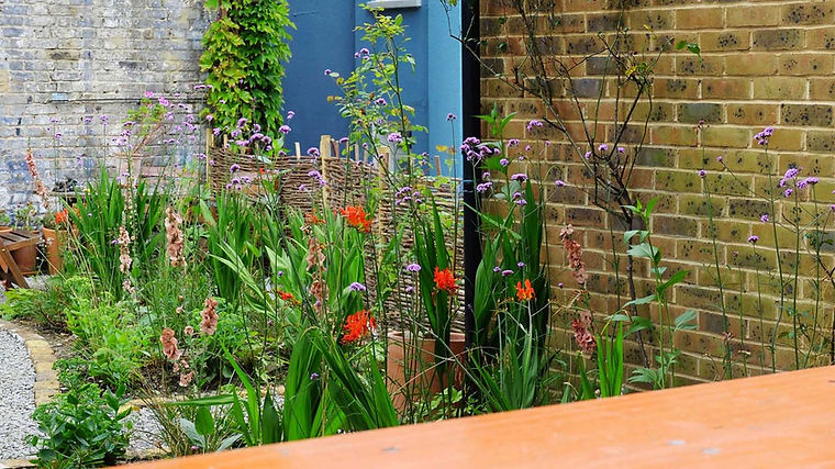 View from outdoor dining area herne Hill Garden design