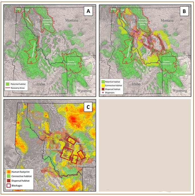 Potential and Restoration Maps-2_v2.jpg
