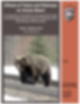 Annual trend grizzly train deaths CY NCD