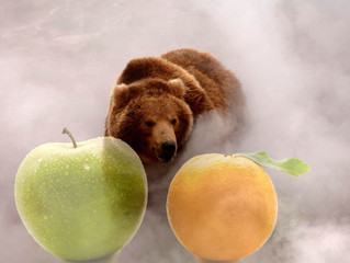 Fog of Science II: Appling and Oranging Grizzly Bear Numbers