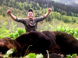 Trophy Hunting Harms Grizzly Bears