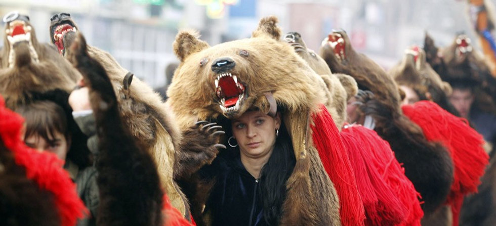 What the People Say Has to Say About Grizzly Bears