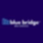 Blue Bridge Web Services