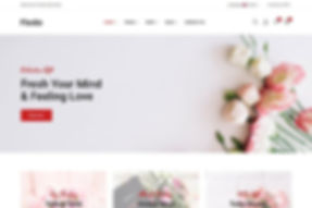 Ecoomerce Website Sample