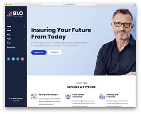 blo-business-website-template.jpg