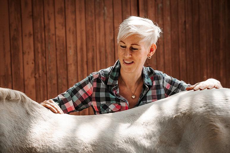 Pferdeosteopathie Jennifer Meßing healthyhorsehannover