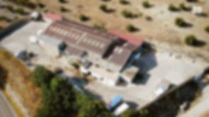 Cámaras-en-mataderos-Equalia.jpg