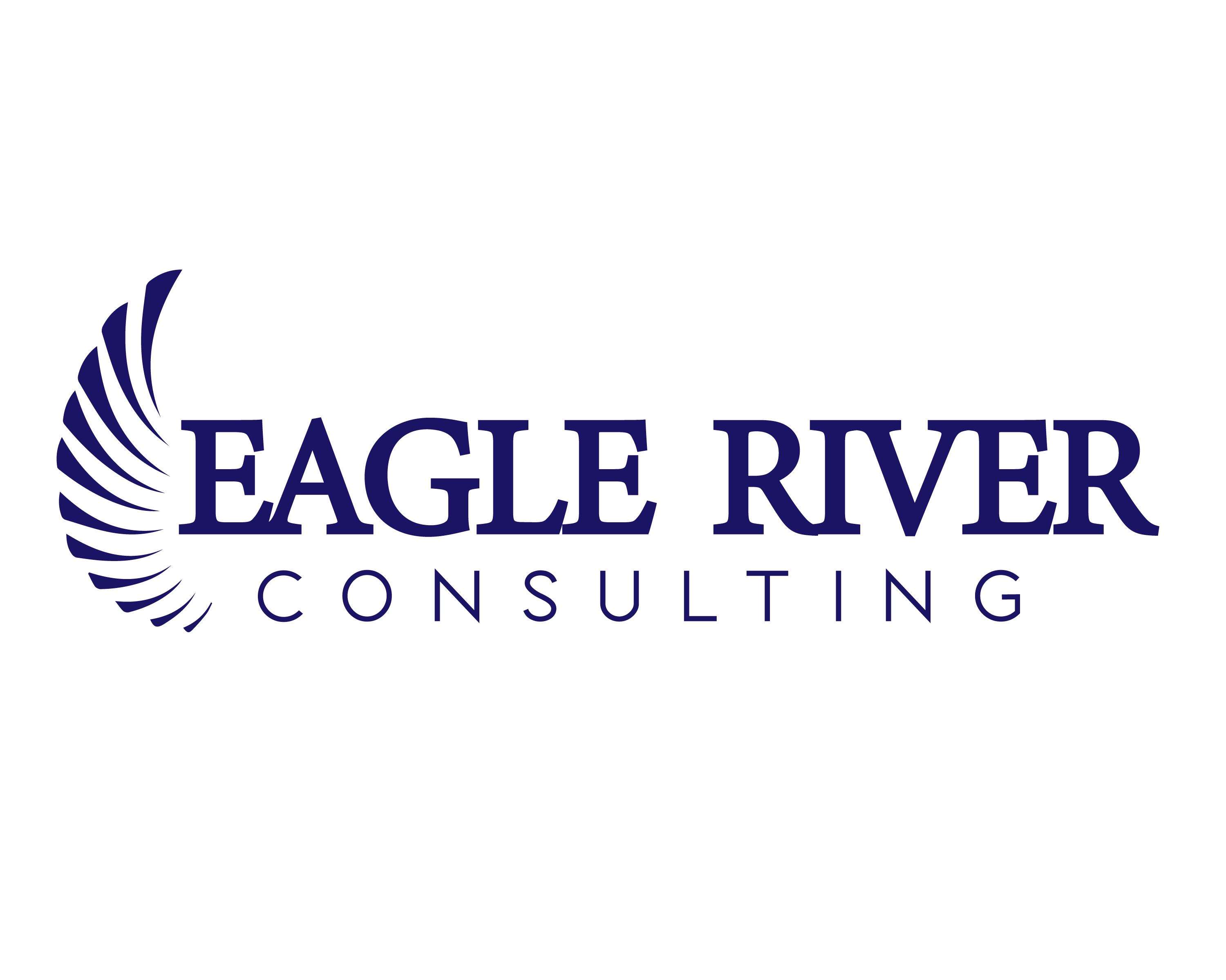 Eagle River Financial Consulting