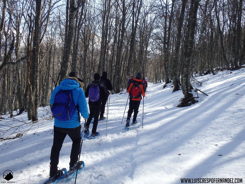 Agradable paseo por bosques con raquetas de nieve