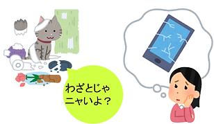 サイトの画像 (2).png