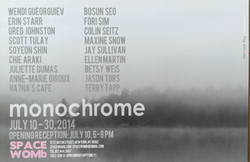 monochrome ex
