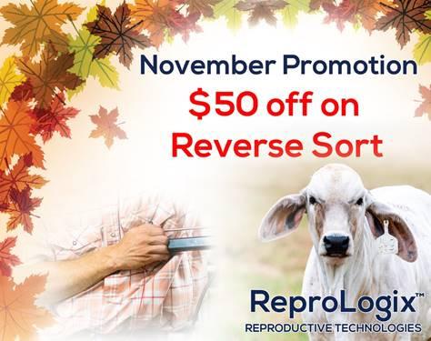 November Promo.jpg