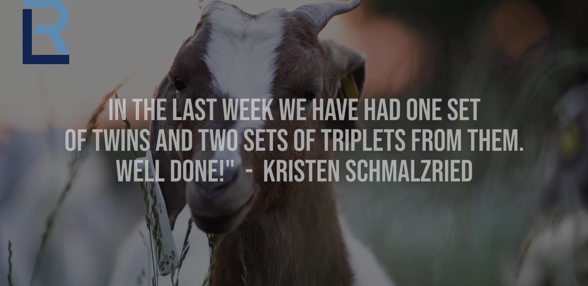 Goat Testimonial