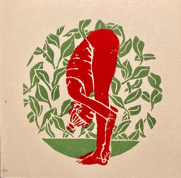 Uttanasana grün/rot