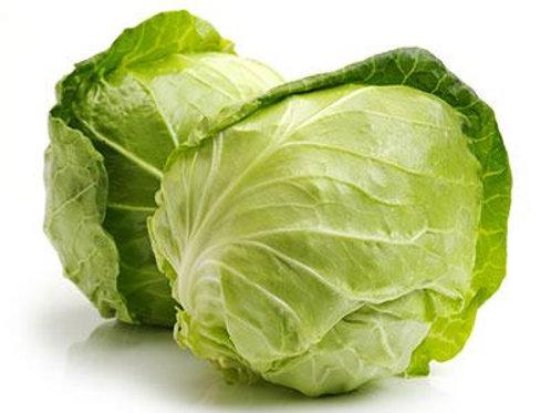 Organic Cabbage / Kobi (1 Pcs)