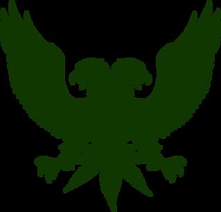 trans-bird-no-text.png