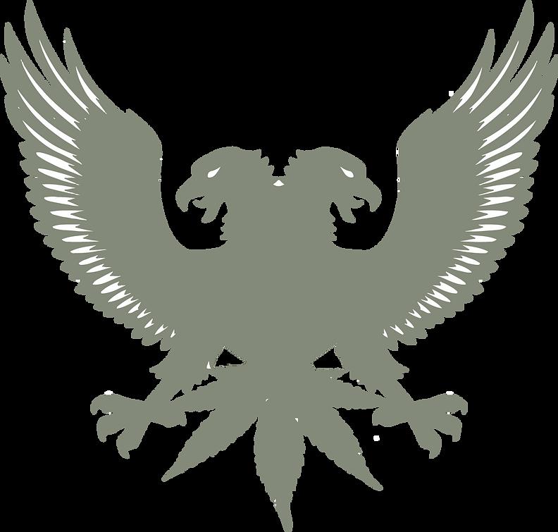 bird-4-dab-back.png