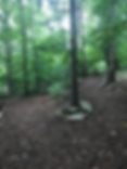Nature Trail.png