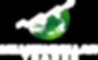 MDT Logo WHITE V1.png